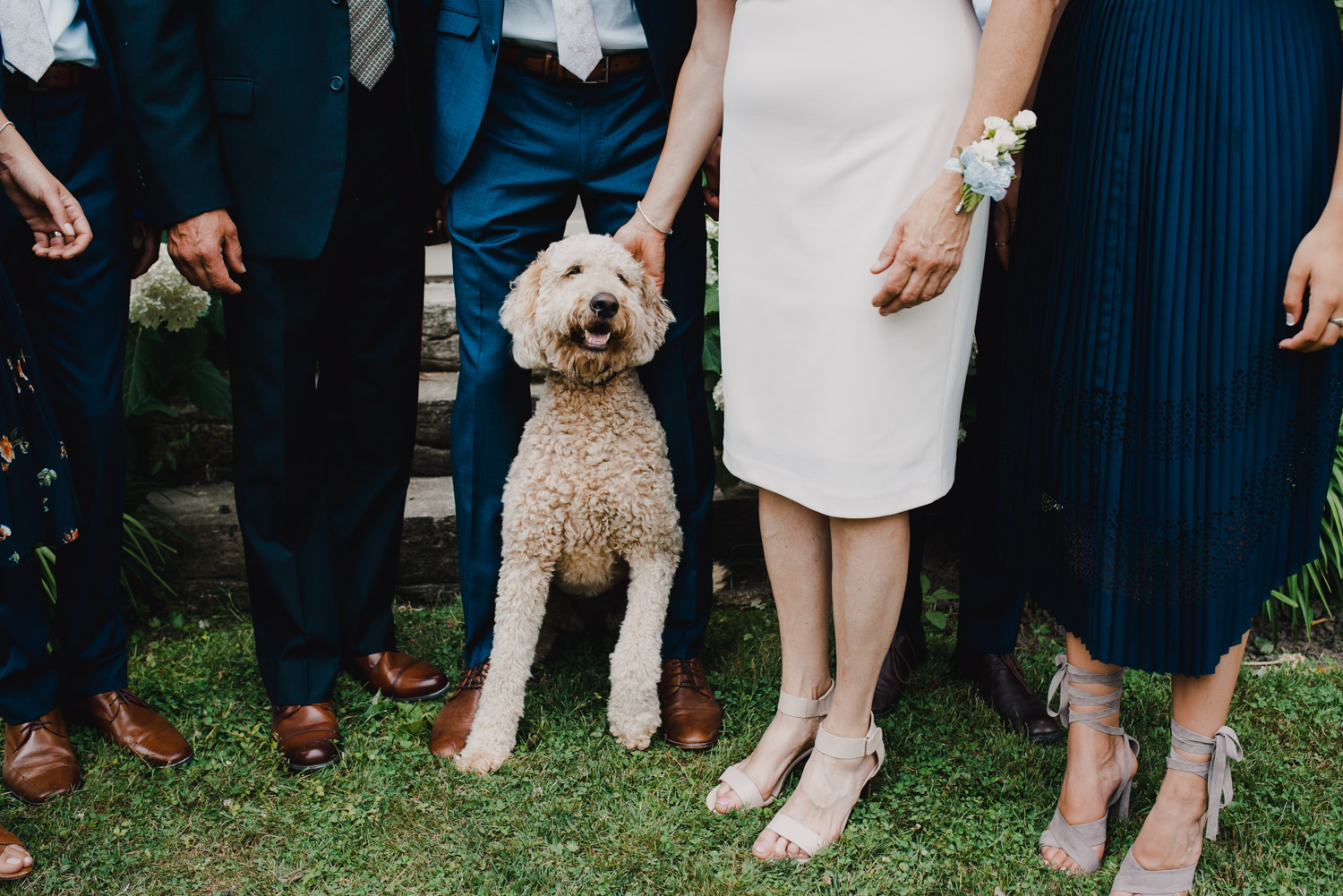 The family dog poses for a portrait surrounded by her family