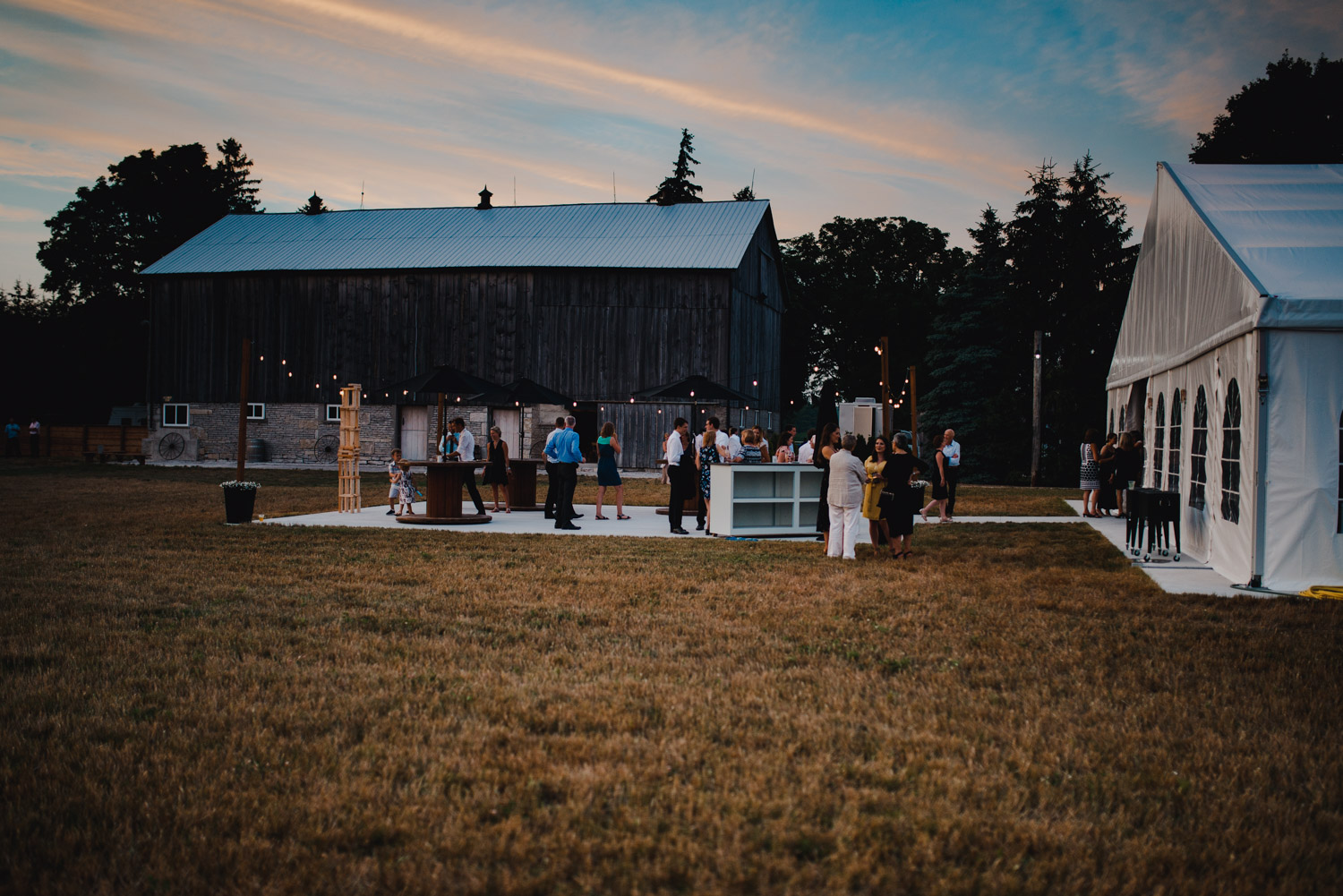 The guests standing by the barn at sunset